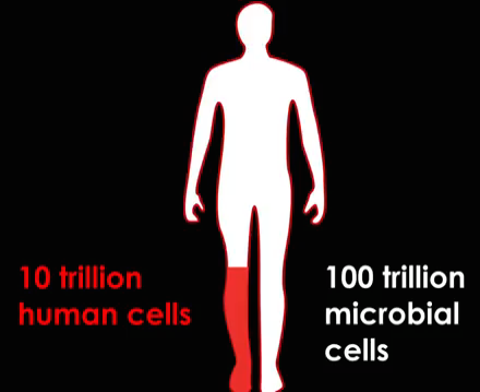 Human Cells vs. Microbial Cells